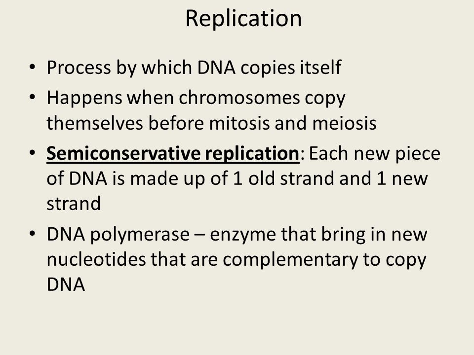 Dna Worksheet Structure Of Dna And Replication - The Best and Most ...