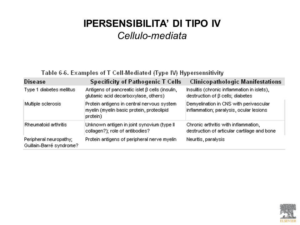 IPERSENSIBILITA' DI TIPO IV