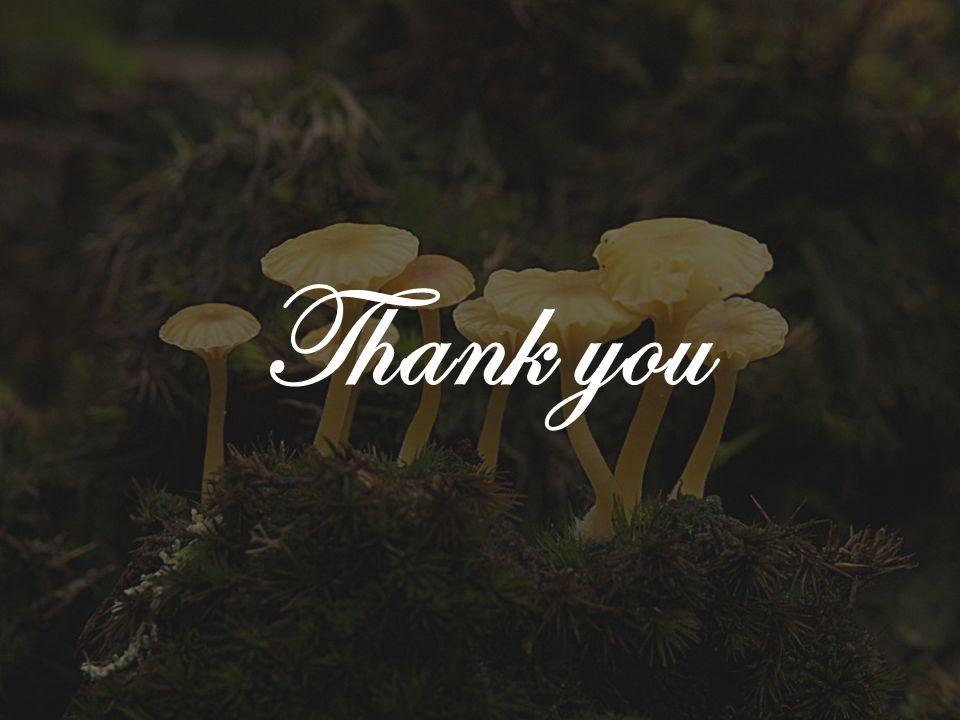what are fungi  younes rashad