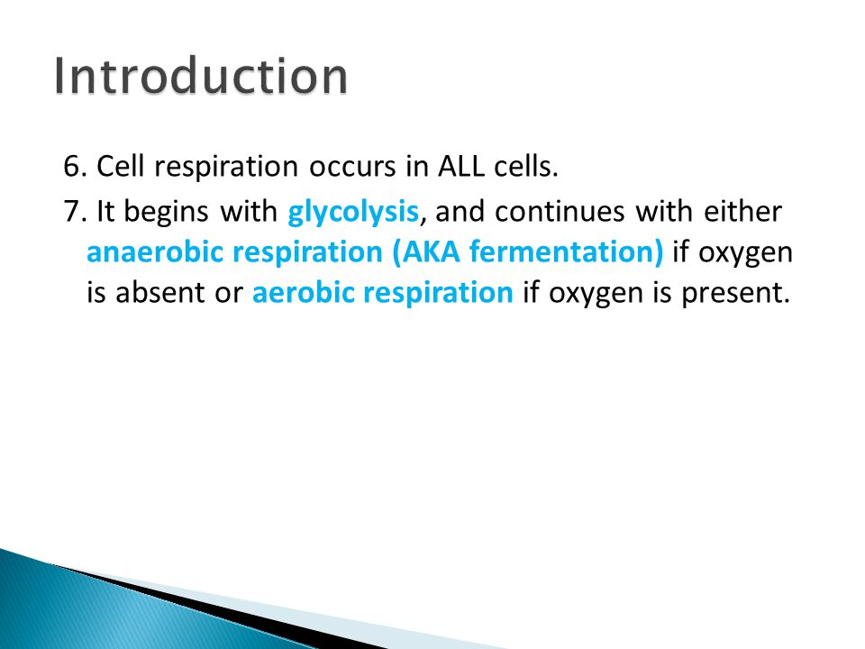 Introduction 6. Cell respiration occurs in ALL cells.