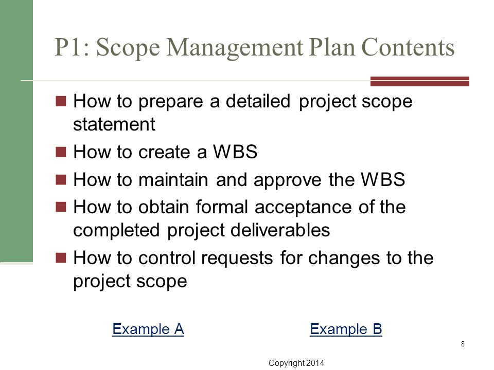 project scope example