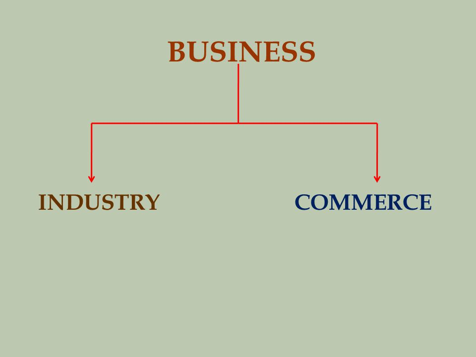 BUSINESS INDUSTRY COMMERCE