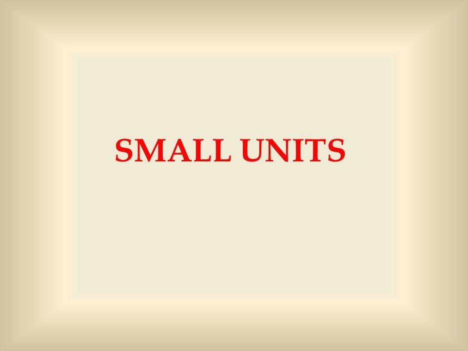 SMALL UNITS