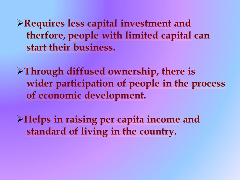 Requires less capital investment and therfore, people with limited capital can start their business.