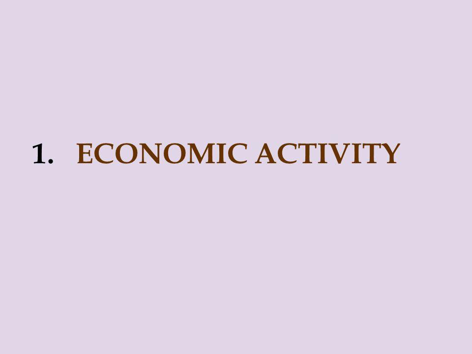 1. ECONOMIC ACTIVITY