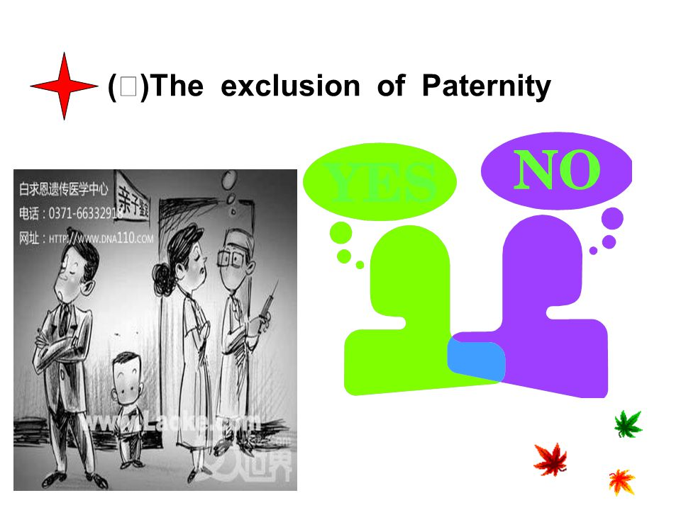 (Ⅲ)The exclusion of Paternity