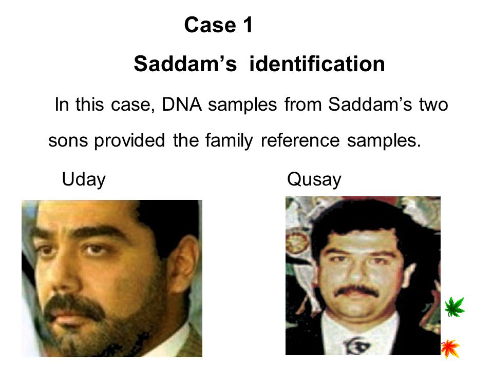 Case 1 Saddam's identification In this case, DNA samples from Saddam's two sons provided the family reference samples.