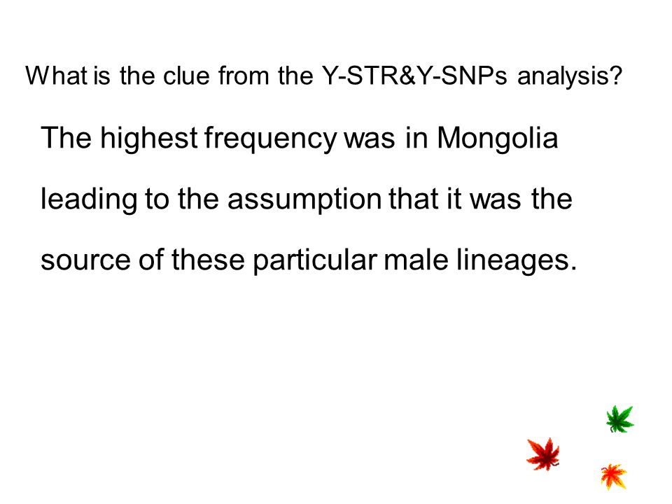 What is the clue from the Y-STR&Y-SNPs analysis