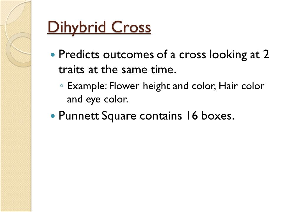 Dihybrid Cross Predicts outcomes of a cross looking at 2 traits at the same time. Example: Flower height and color, Hair color and eye color.