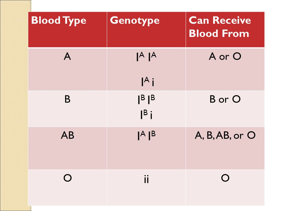 IA IA IA i IB IB IB i IA IB ii Blood Type Genotype