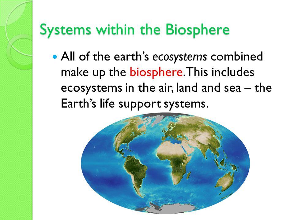 Ecological principles - ppt download