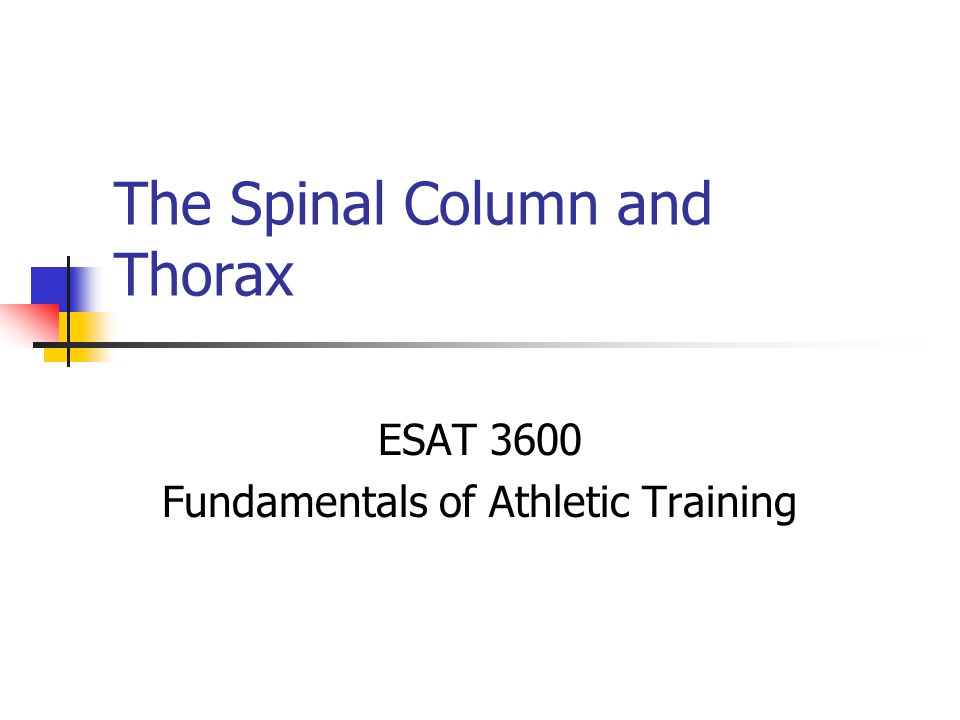 The Spinal Column And Thorax Ppt Video Online Download