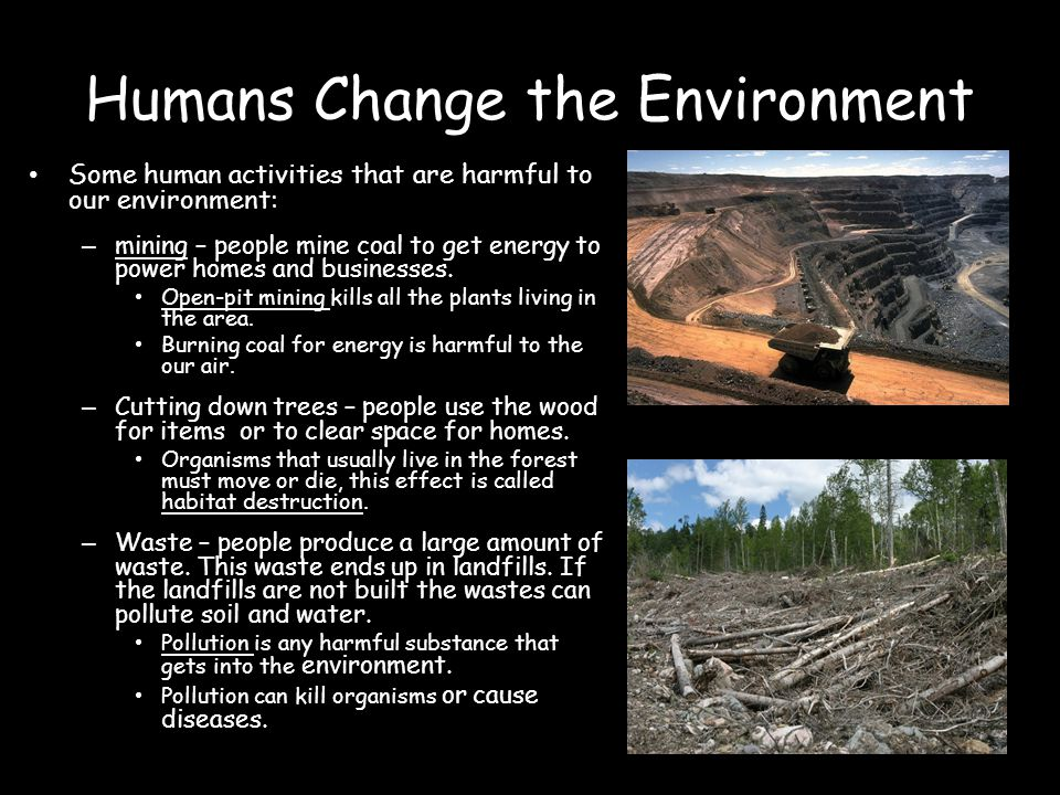 How man is changing the environment