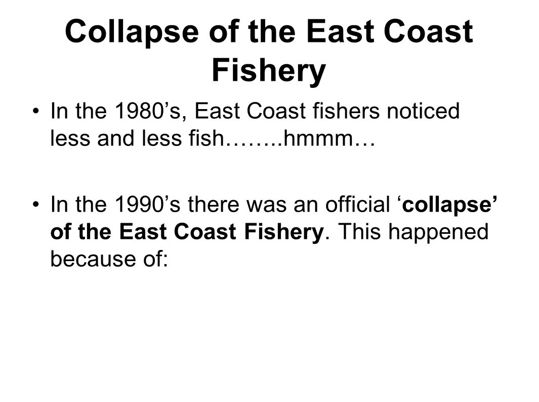 east coast fishery essay Implan based impact modeling for commerical fisheries on florida's east coast: alternative approaches and recommendations by david mulkey, tom stevens, alan w hodges, and charles adams.