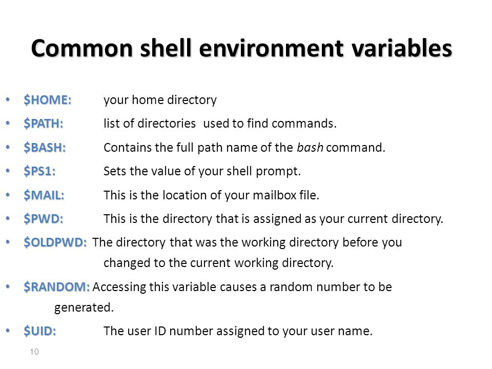 Common shell environment variables