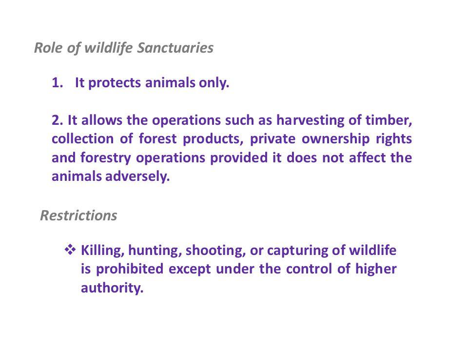 Role of wildlife Sanctuaries