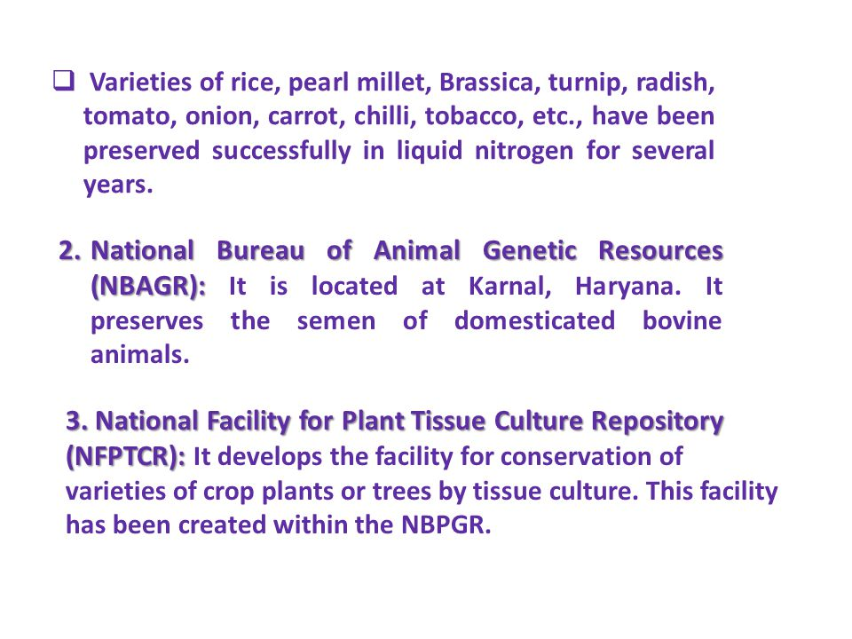 3. National Facility for Plant Tissue Culture Repository