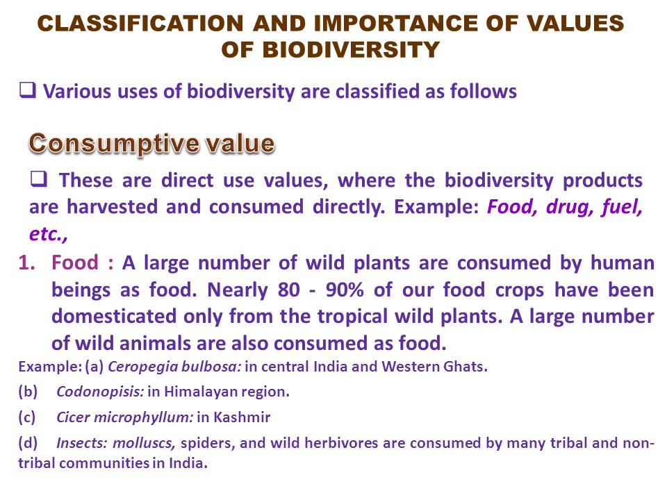 CLASSIFICATION AND IMPORTANCE OF VALUES OF BIODIVERSITY