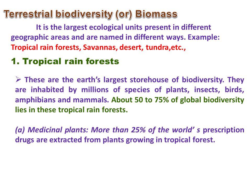 Terrestrial biodiversity (or) Biomass