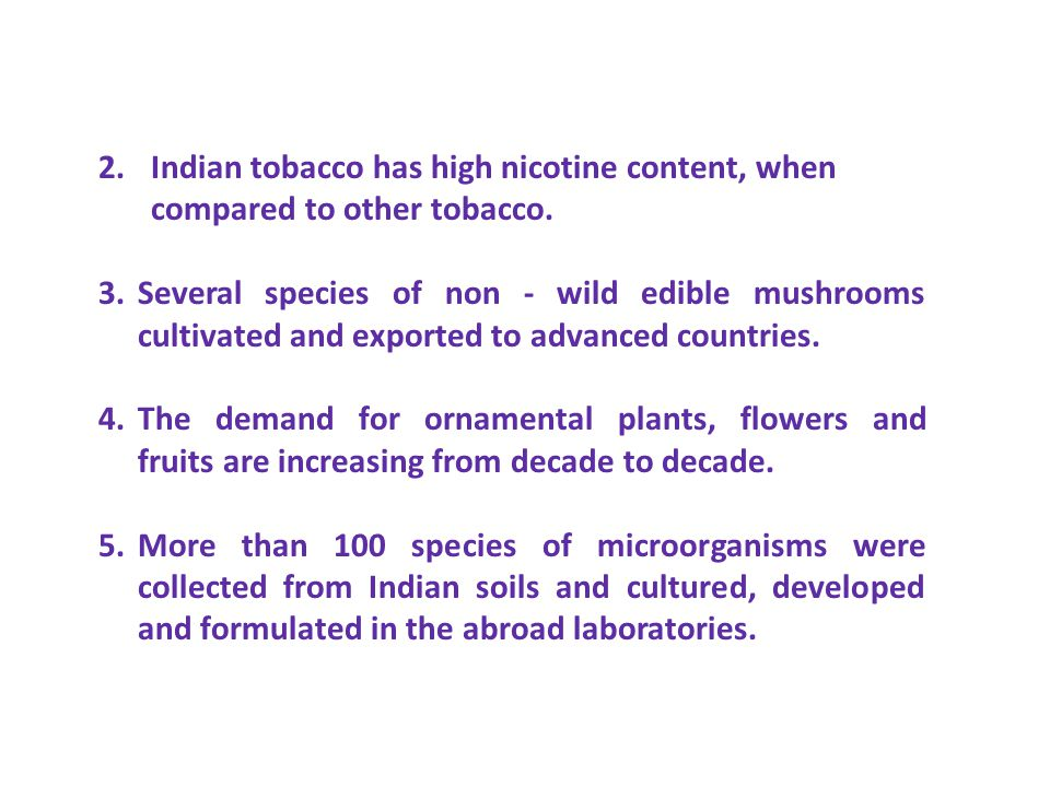 2. Indian tobacco has high nicotine content, when
