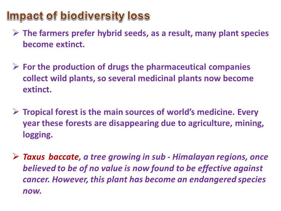 Impact of biodiversity loss