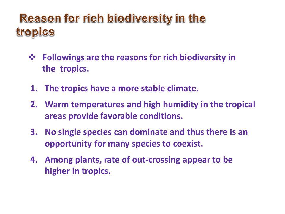 Reason for rich biodiversity in the tropics