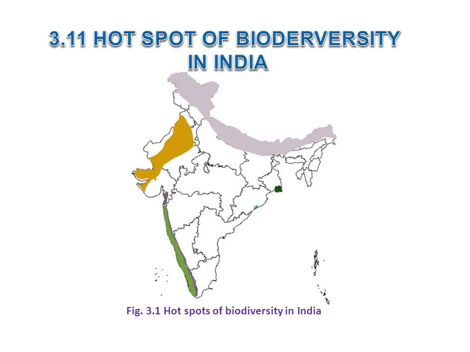3.11 HOT SPOT OF BIODERVERSITY