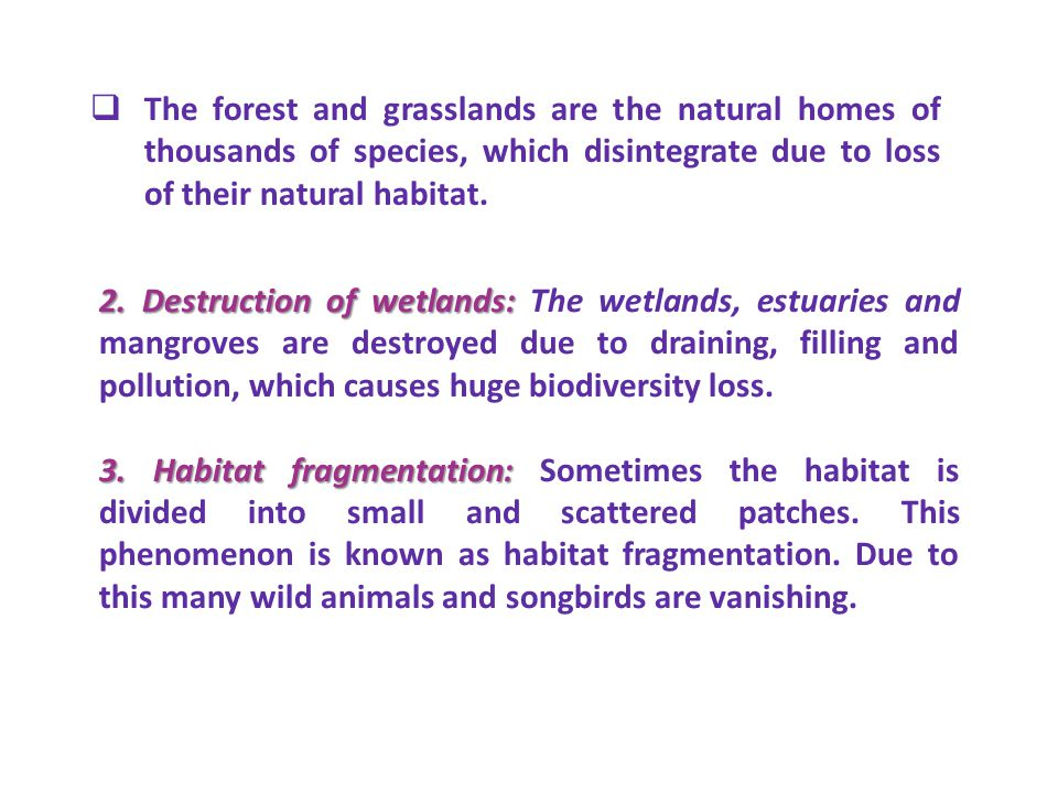The forest and grasslands are the natural homes of