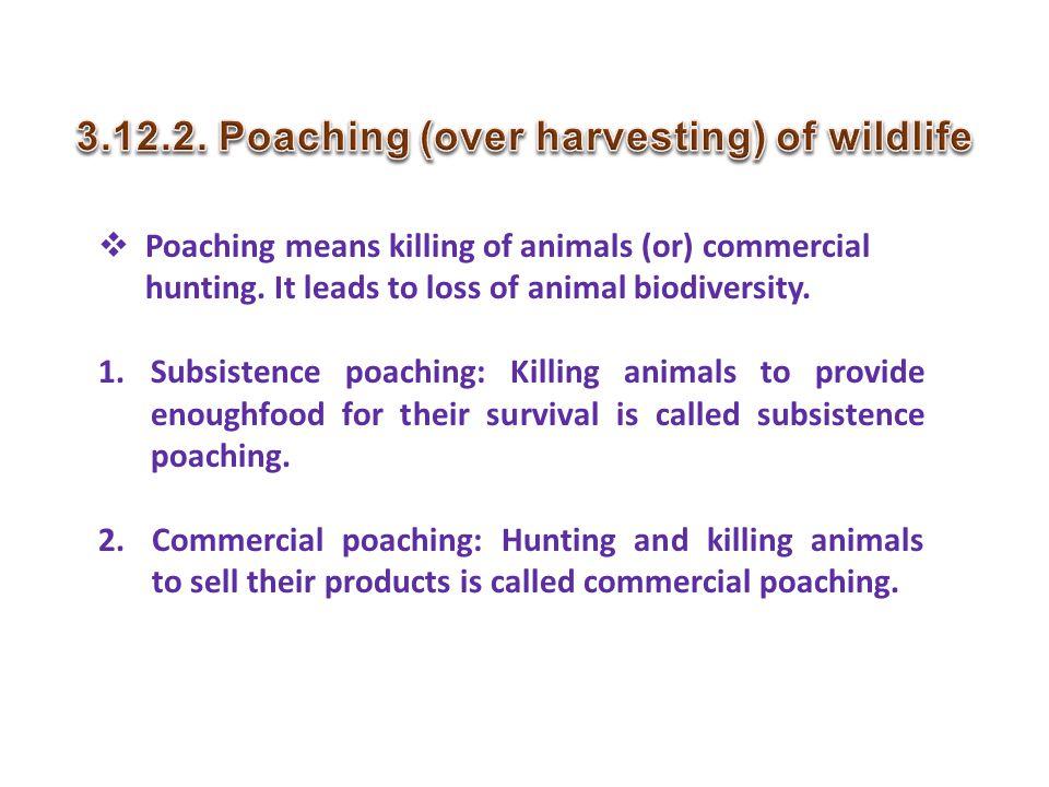 3.12.2. Poaching (over harvesting) of wildlife