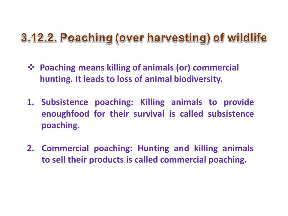 Poaching (over harvesting) of wildlife