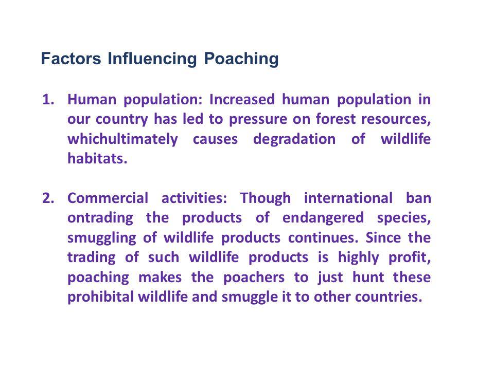 Factors Influencing Poaching