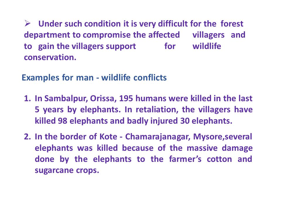 Examples for man - wildlife conflicts