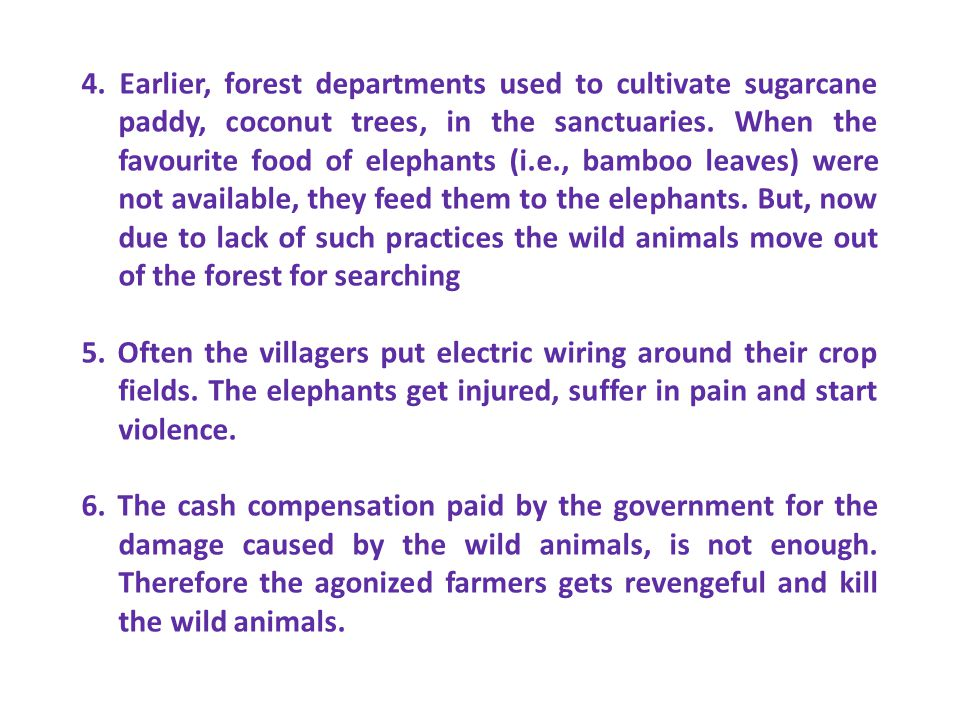 4. Earlier, forest departments used to cultivate sugarcane paddy, coconut trees, in the sanctuaries. When the favourite food of elephants (i.e., bamboo leaves) were not available, they feed them to the elephants. But, now due to lack of such practices the wild animals move out of the forest for searching