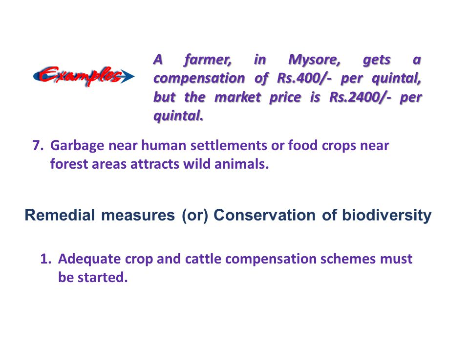 Remedial measures (or) Conservation of biodiversity