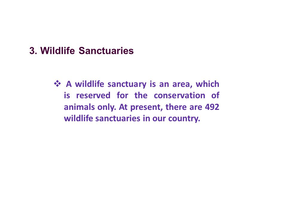 3. Wildlife Sanctuaries
