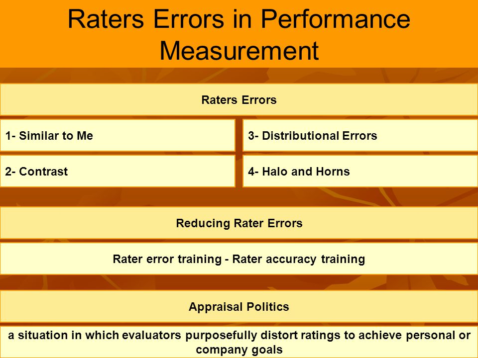 Raters Errors in Performance Measurement