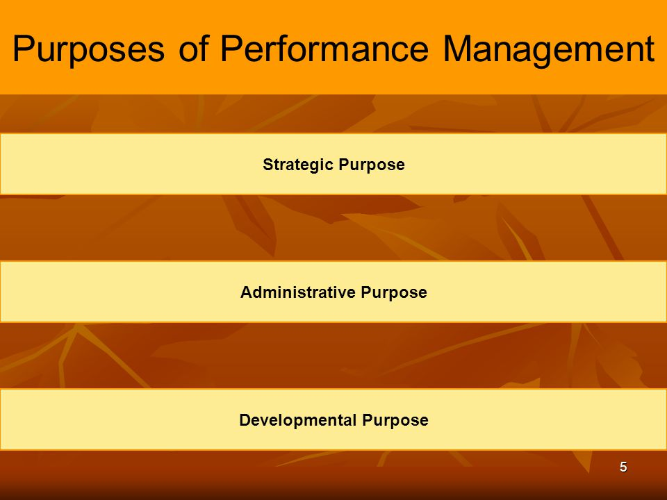 Purposes of Performance Management