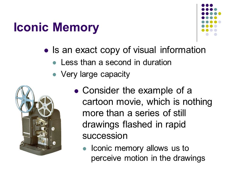 Memory Psychology: A Concise Introduction 2nd Edition ...