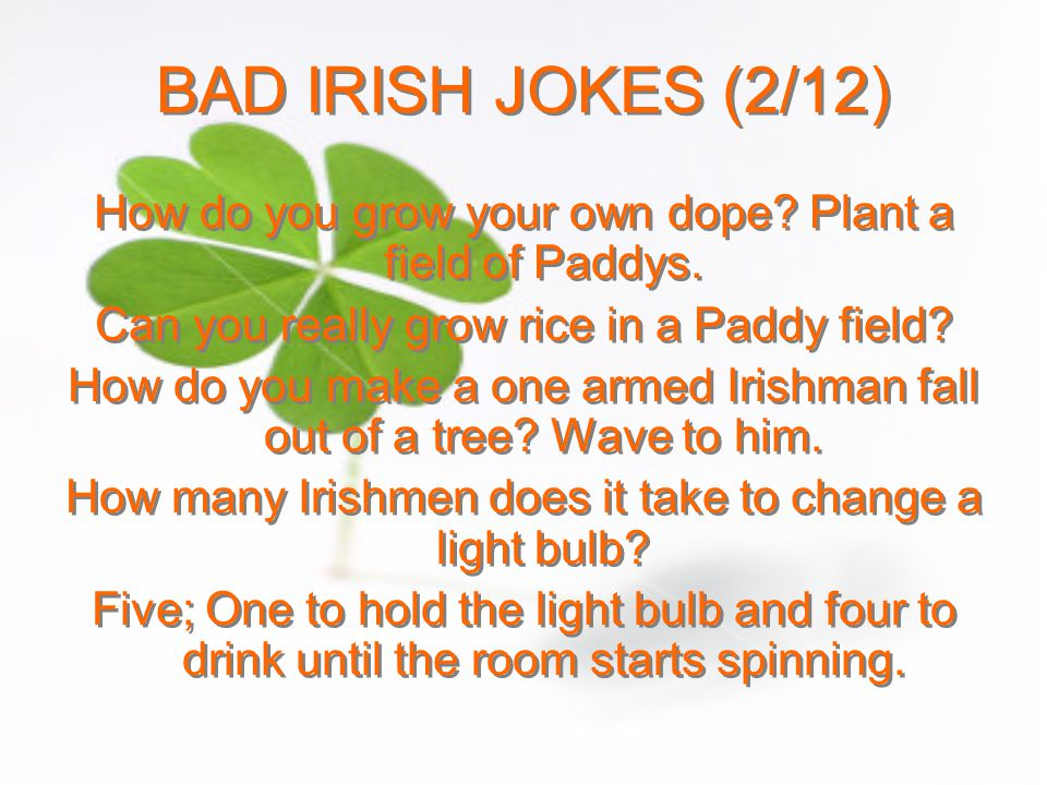 BAD IRISH JOKES (2/12) How do you grow your own dope Plant a field of Paddys. Can you really grow rice in a Paddy field