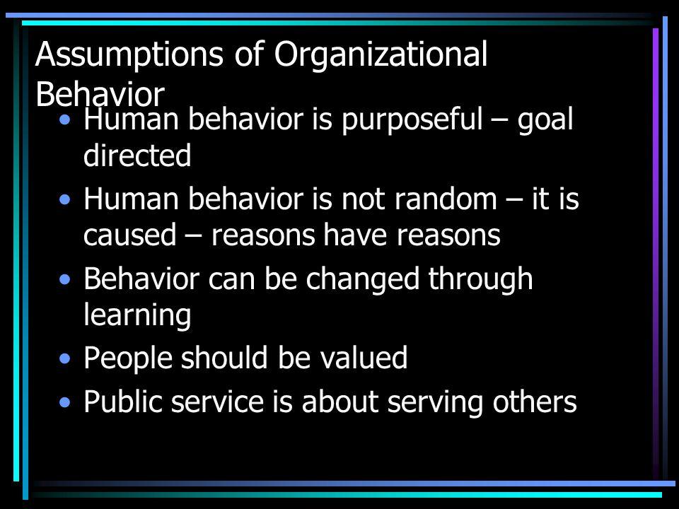Assumptions of Organizational Behavior