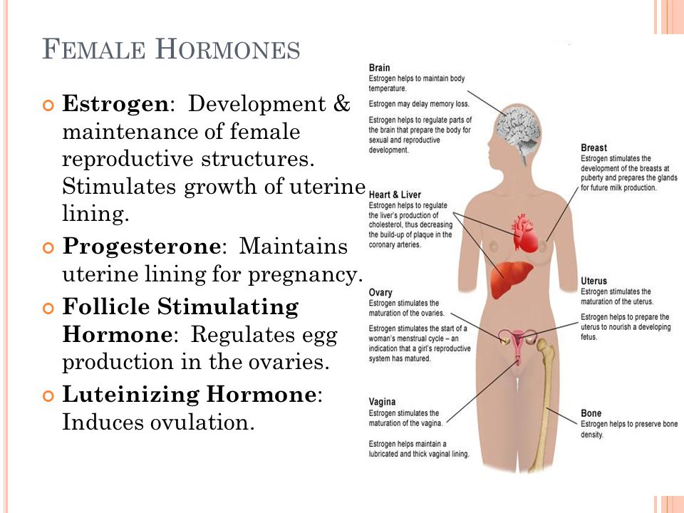 Follicle-Stimulating Hormone - WebMD