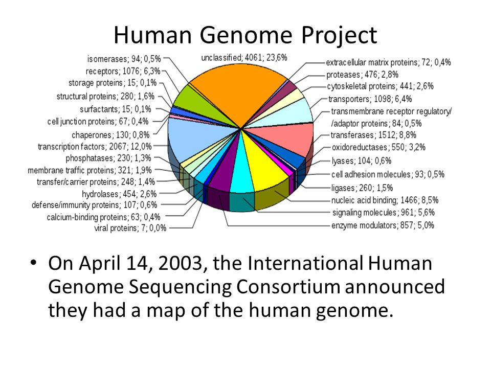 International Human Genome Sequencing Consortium Nature