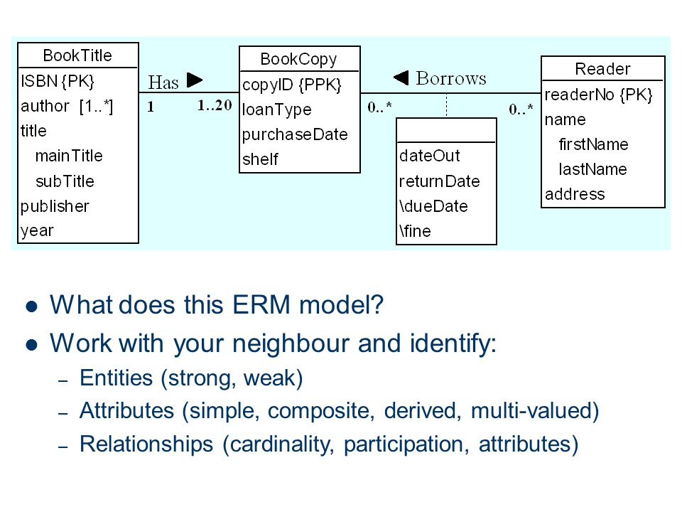 What does this ERM model Work with your neighbour and identify: