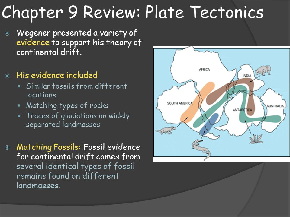 "on the evidence that supports the theory of continental drift and plate tectonics essay Plate tectonics and continental drift how did the theory develop what is the evidence based on sanity would never dare support such a theory""."