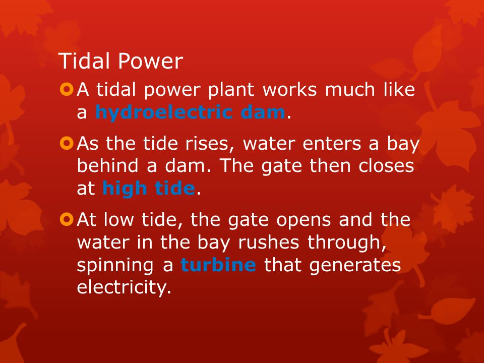 Tidal Power A tidal power plant works much like a hydroelectric dam.