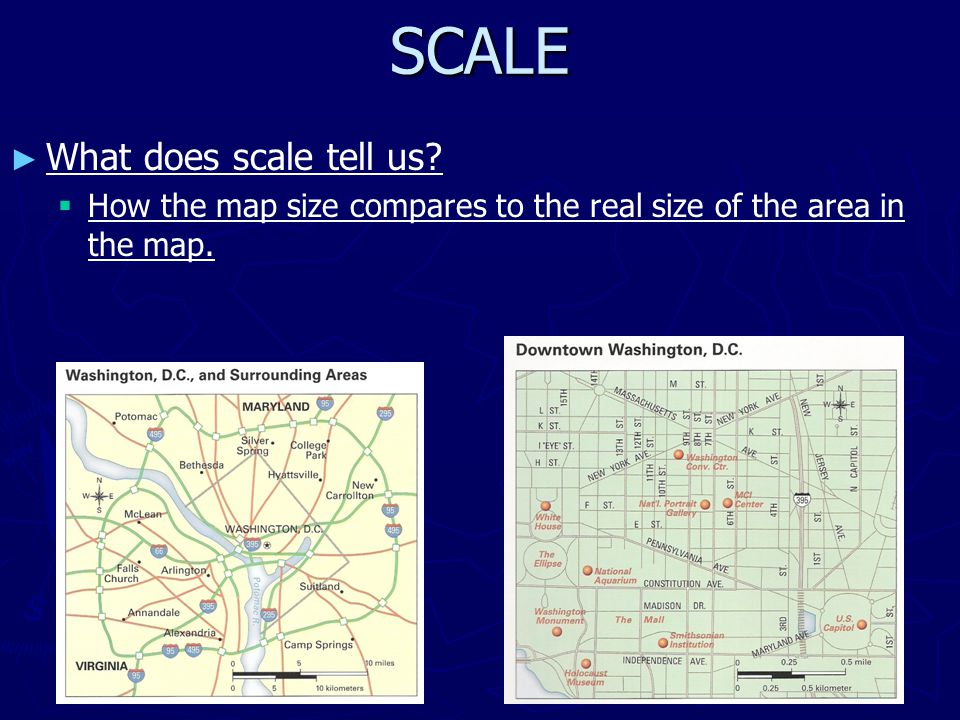 6 Scale What Does Scale Tell Us