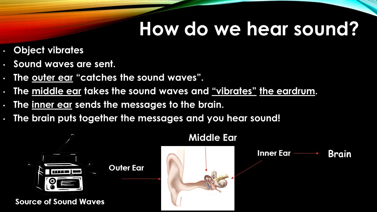 How do we hear sound Object vibrates Sound waves are sent.