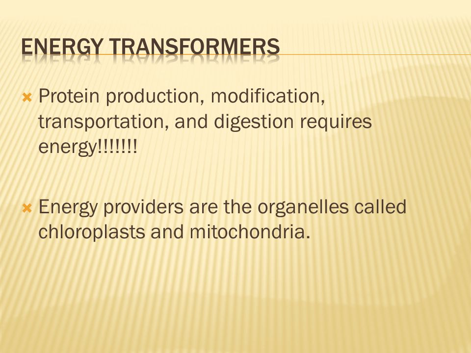 Energy Transformers Protein production, modification, transportation, and digestion requires energy!!!!!!!