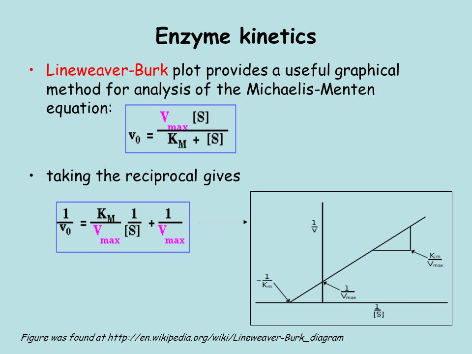 An introduction to enzyme kinetics