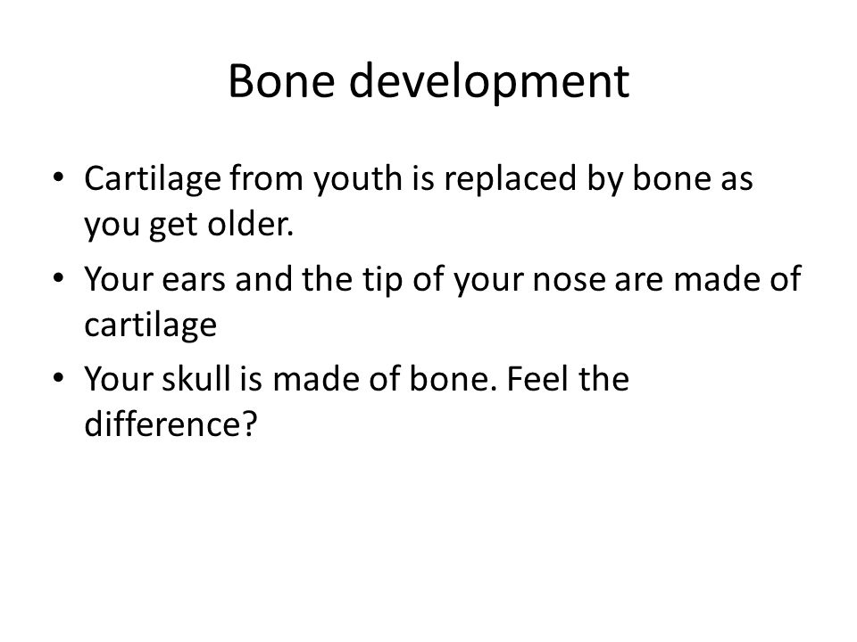 Bone development Cartilage from youth is replaced by bone as you get older. Your ears and the tip of your nose are made of cartilage.